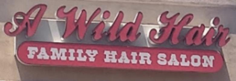 A Wild Hair Family Hair Salon