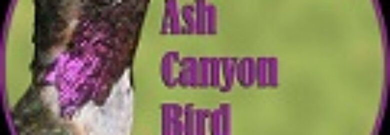 Ash Canyon Bed & Breakfast