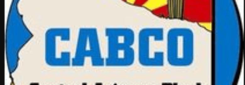 Central Arizona Block Co Inc