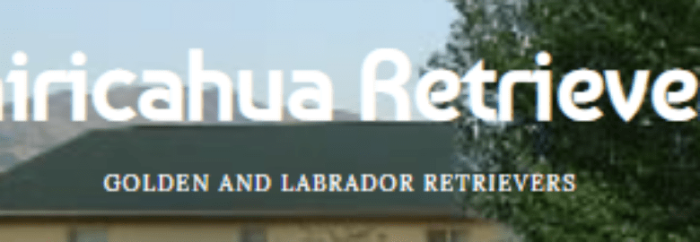 Chiricahua Retrievers